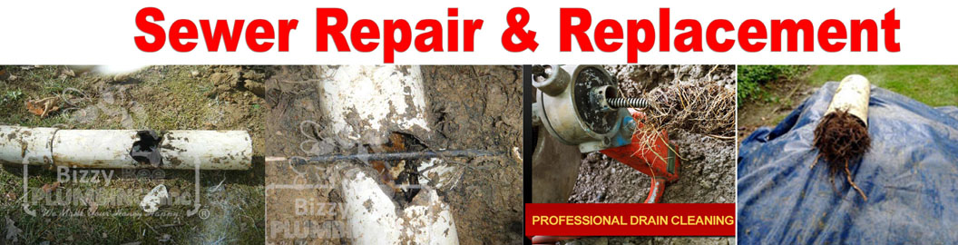 Sewer Repair Specialist